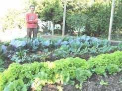 A agricultora Geselda Kafer mostra sua horta onde a chuva ajudou no crescimento das hortaliças