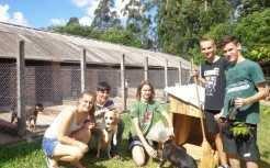 Jovens voluntários e veterinário responsável pelo canil junto aos cães da Apaam