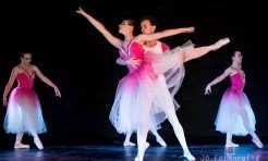Entre os ritmos oferecidos estão ballet fit, sertanejo, forró, samba de gafieira, entre outros