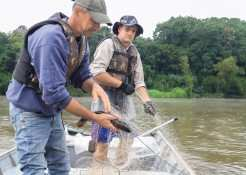 Escassez de peixes motiva pescadores profissionais do Vale do Taquari a se deslocar para a fronteira