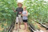 Além da esposa Jurema, na mão de obra Guido também tem o apoio do colaborador Vico da Silva. O investimento estrutural foi de R$ 30 mil feito com recursos próprios
