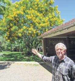 Professor Arno Kehl e bolão de ouro oriundo do projeto Clube da Árvore desenvolvido em São Luís na década de 1990