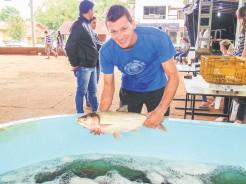 Consumidores terão a oportunidade de comprar peixes frescos